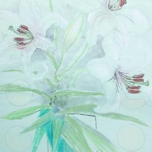 lilies-iii